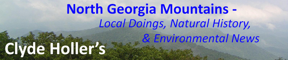North Georgia Blue Ridge Mountains | Clyde Holler